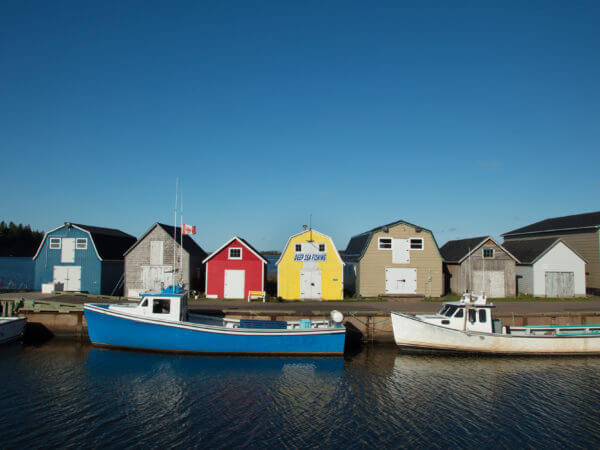 Lobster boats at dock, colorful houses in background